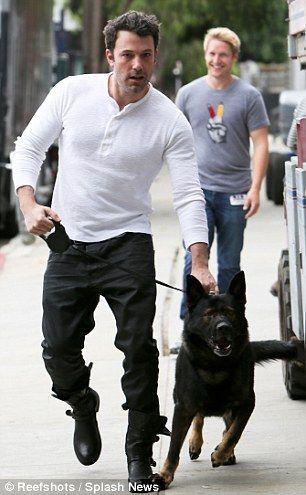 Ben Affleck With Gsd German Shepherd Dogs Shepherd Dog Black German Shepherd