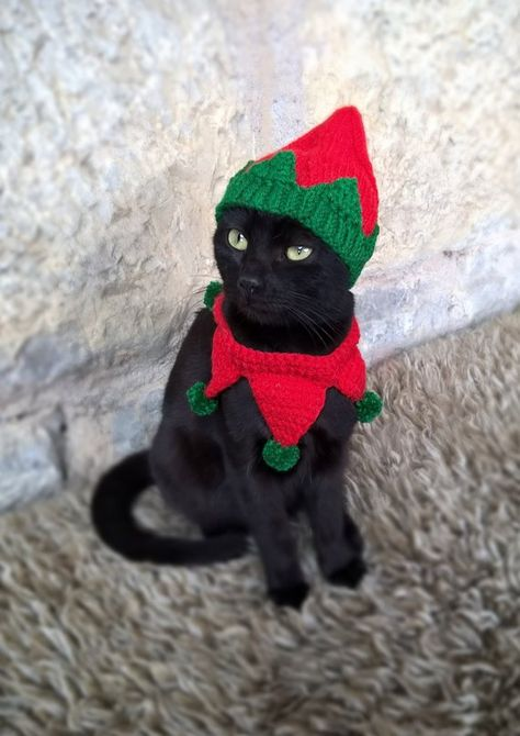 Elf Pet Costume Christmas For