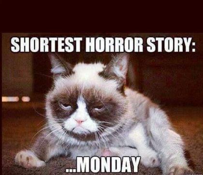 Shortest Horror Story Monday Grumpy Cat Humor Funny Monday Memes Funny Cat Memes