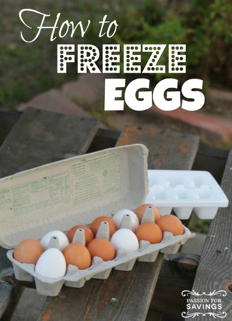 How to Freeze Eggs! Easy Tips for making Eggs last longer! Buy these on sale and freeze them to save money!