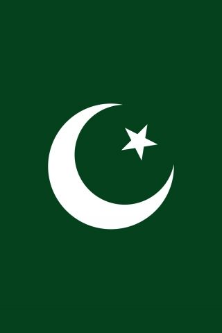 Pakistani Flag Have White Green Color And Star Moon In Green Area Pakistan Flag Wallpaper Pakistan Flag Pakistani Flag