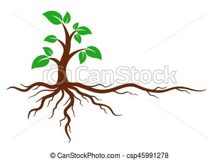 Green Tree With Roots Vector Stock Illustration Royalty Free Illustrations Stock Clip Art Icon Stock Clipart Icons Log Roots Logo Green Trees Tree Roots