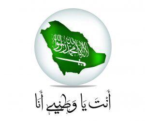 مطويات عن اليوم الوطني السعودي 1441 جديدة جاهزة 2019 مجلة رجيم Christmas Bulbs Holiday Decor Christmas Ornaments
