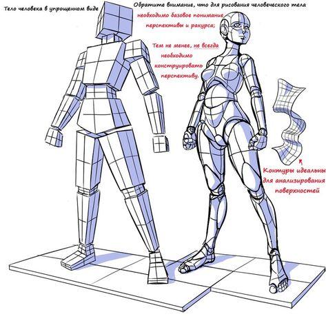 Как правильно рисовать формы и пропорции