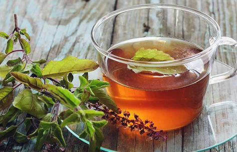 9 Natural Remedies To Manage Lupus in 2020 (With images) | Tulsi ...