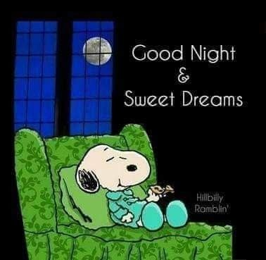 Pin by Diana June on snoopy and the gang 5   Goodnight snoopy Good night  sweet dreams Good night