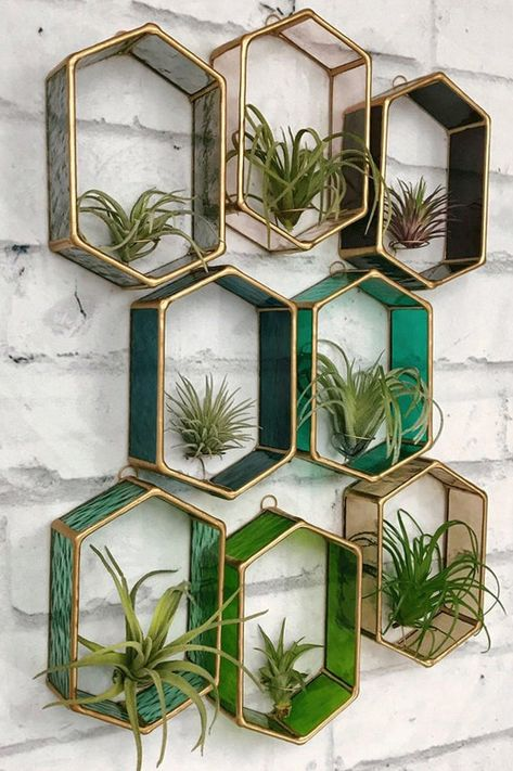Air Plant Holder, Stained Glass, Air plant wall decor, air plant display, wall planter, terrarium , tillandsia, planter, indoor planter