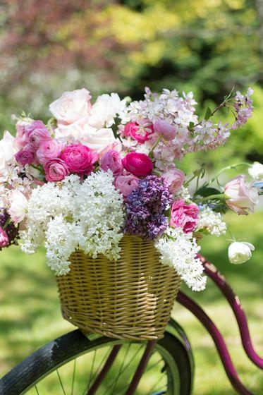 FOTOinšpirácie: To withstand fresh lilac