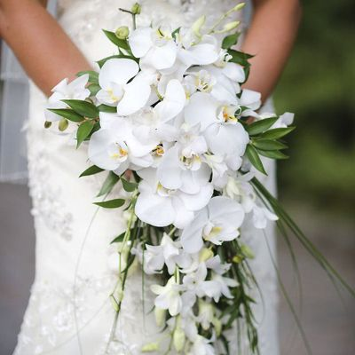 Classic White Orchid Wedding Bouquet Order And Buy Online At Bunchesdirect Hand Bouquet Wedding Orchid Bouquet Wedding White Orchid Bouquet
