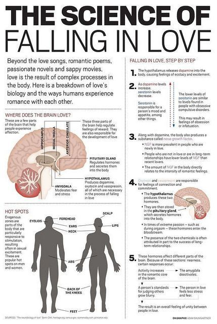 Psychology Infographic And Charts Tender Date Site Relationship