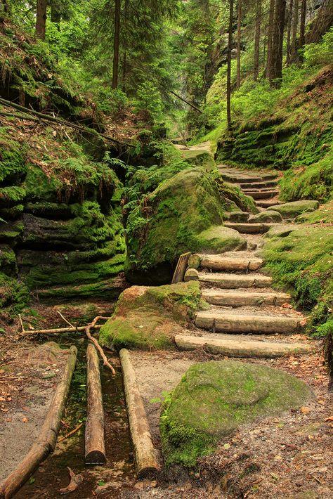 Sächsische Schweiz. (1)