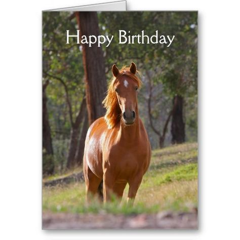 Beautiful Chestnut Horse Photo Birthday Card Little Pony Birthday