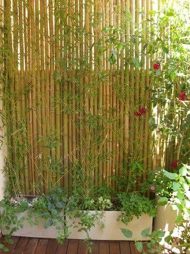 14 Unbelievable Garden Landscaping Kildare Ideas In 2020 Backyard Garden Design Small Backyard Gardens Backyard Garden