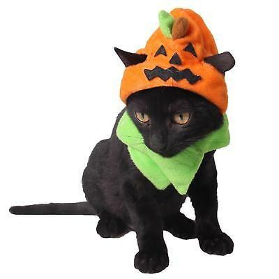 Cute Pumpkin Pet Costume Dress Up Cap Puppy Dogs Cats Halloween Party Decoration In 2020 Pet Costumes Pet Halloween Costumes Cat Halloween Costume