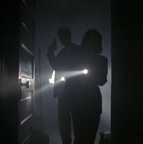 Mulder and Scully Story Inspiration, Character Inspiration, Detective Aesthetic, Character Aesthetic, Dana Scully, Provocateur, Fiction, Criminal Minds, The Darkest