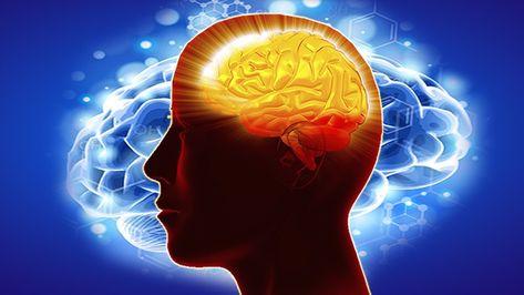 The Millionaire Mind Secrets Create A Success Mindset Fast Best