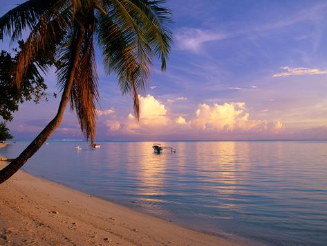 The 24 Best Island Beaches In The World With Images Most