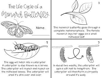 Monarch Butterfly Life Cycle Mini Unit Bundle Butterfly Life