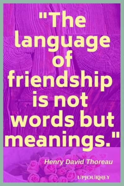 125 Best True Friendship Quotes And Sayings Positive