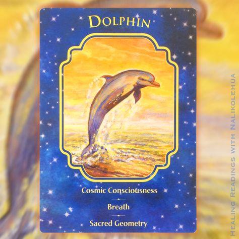 【神聖幾何学模様、呼吸、アゾゼオアゼツライトに宇宙意識】 今日のブログは、天使の声に耳を貸さずにいると、どのように天使がメッセージを送り続けて来るのかという例と、神聖幾何学模様(Sacred Geometry)と呼吸、または宇宙意識との関係についての、考察の途中経過(?)です。 天使たちは、私達が魂の目的を果たせるよう、その道標となるサインを送ってきてくれるのですが、今の私にとって神聖幾何学模様がそんな道標の一つのようなのです・・自然界に存在する幾何学模様、生命の花、そして不思議なパワーを持つアゾゼオアゼツライトという石さんにご興味のある方は、画像をクリックして是非ブログをご一読ください⭐️◼︎カード:イルカ〜エンジェルドリームオラクルカード #エンジェルカード #emailreadings #healingreadings