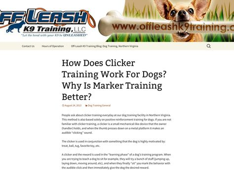 How Does Clicker Training Work For Dogs Off Leash K9 Training