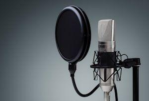 Voice Over Freelance Voice Actors Fiverr The Voice Fiverr Audio