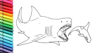 Shark Coloring Pages For Preschoolers Di 2020