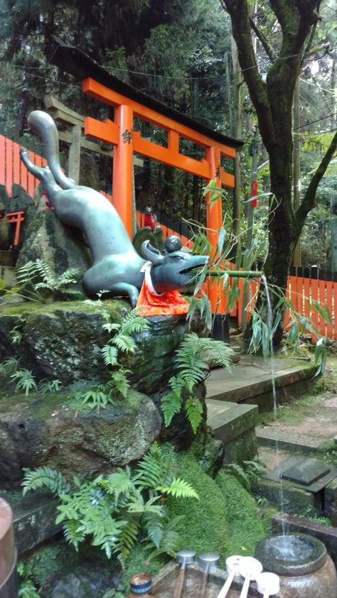 At The Inari Shrine Kyoto Prefecture Jardin Japonais Japon