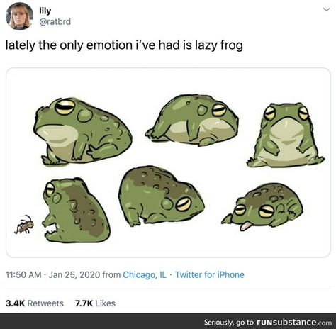 Lately the only emotion i've had is lazy frog - iFunny :) Animal Memes, Funny Animals, Cute Animals, Animals Amazing, Stupid Funny Memes, Funny Relatable Memes, Fuuny Memes, True Memes, Funny Gifs