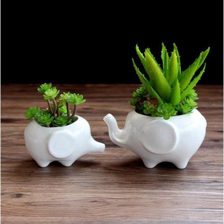 Kawaii Animals Ceramic Flower Pot Elephant Succulent Planter Cactus Succulent Plants Flower Cute White Pot 1pcs Baby Elephant Walmart Com Ceramic Succulent Planter Ceramic Flower Pots Flower Pots