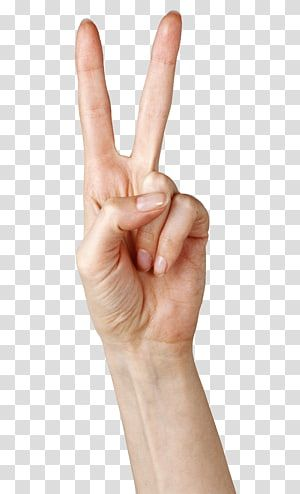 Left Person S Hand Finger Hand Showing Two Fingers Transparent Background Png Clipart Clip Art Transparent Background Ok Hand Sign