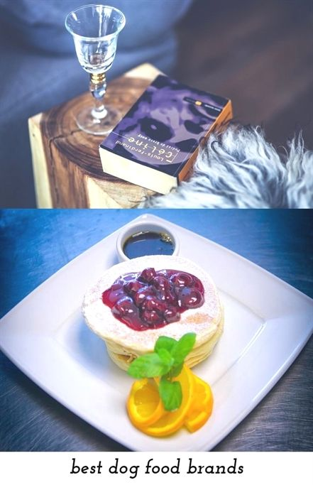 Best Dog Food Brands 106 20180909081846 59 Food Concession Trailer Manufacturers Food Lunch Box Kopen En Food Ve Food Chinese Food Delivery Food Reviews