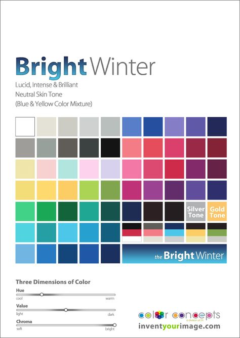 Colors for a Bright Winter Man www.inventyourimage.com Copyright © 2011 No part of these materials may be  reproduced, distributed or transmitted in any form or by any means  unless prior written permission is given by  Lisa K. Ford- CEO and Founder of  Invent Your Image, LLC
