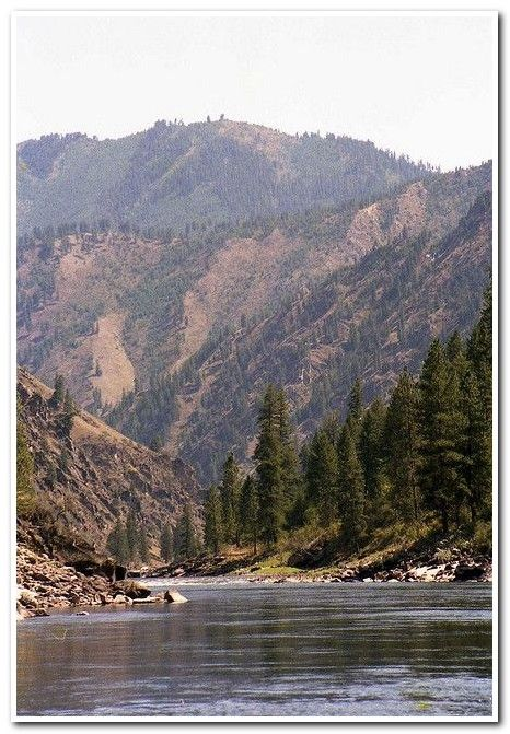 Campsites What Are The Basic Requirements For A Great Camping Vacation Salmon River Beautiful Places Outdoor