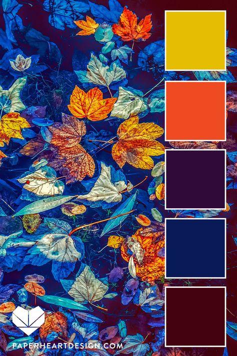 what is color psychology Color Schemes Colour Palettes, Fall Color Palette, Colour Pallette, Color Palate, Color Combos, Yellow Color Schemes, Best Color Combinations, Orange Color Palettes, Bright Color Schemes