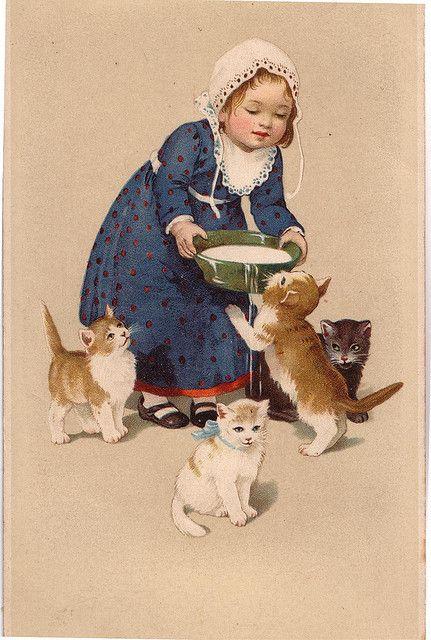 poezen melk meisje 1916