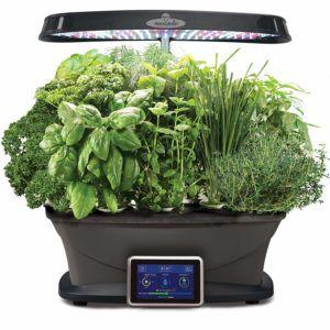 Aerogarden Bounty With Gourmet Herb Seed Pod Kit 172 49 Herb Garden Kit Herbs Indoors Herb Seeds