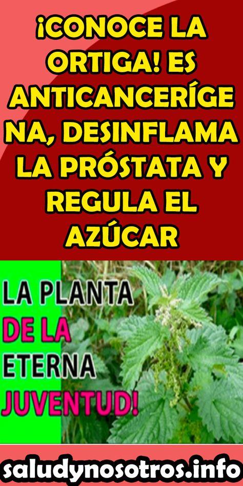 ortiga desinflama prostata