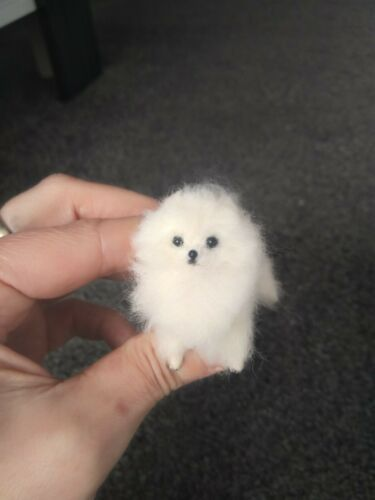 Ooak Needle Felted Dollhouse Miniature Pomeranian Puppy Dog Ebay