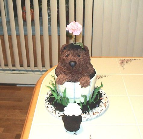 Groundhog Day Flower Pot Birthday Cake This one's a dark chocolate cake filled with layers of vanilla and chocolate buttercream.