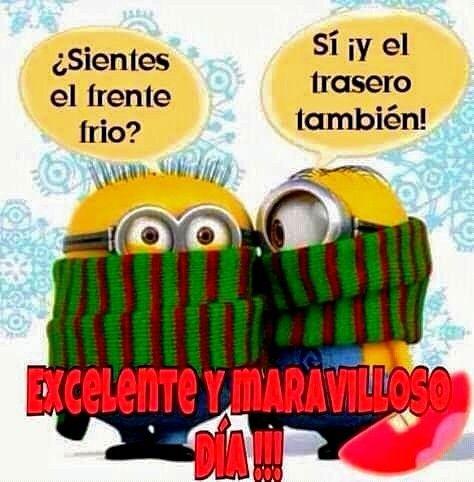Pin De Mari En Minions Imagenes Chistosas De Frio Memes De Frio Humor De Minions