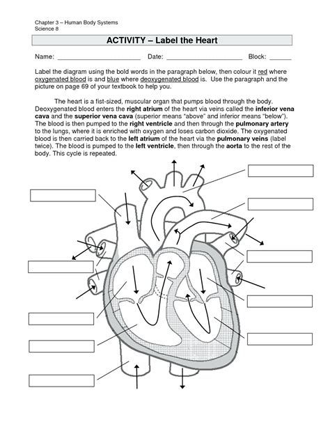 Images With Images Heart Diagram Human Heart Diagram Heart