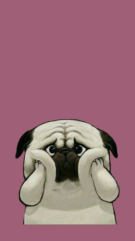34 Trendy Ideas For Funny Dogs Wallpaper Iphone Pug Wallpaper
