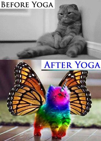 Yoga Meme : Before, After, Funny,, Inspiration,