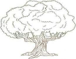 40 Trendy Live Oak Tree Tattoo Nature Oak Tree Drawings Tree Drawing Oak Tree Tattoo