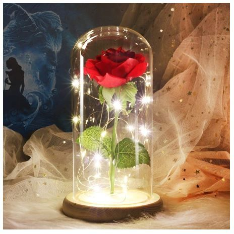 Rose Led Capsule Rose In A Glass Flower Lamp Glass Domes