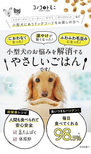 福岡の広告デザイン Webデザイン会社 リディアミックス株式会社 Lp デザイン デザイン 募集 パンフレット デザイン
