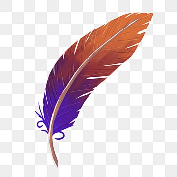 Colored Feather Pen Feather Clipart Learning Brush Feather Pen Png Transparent Clipart Image And Psd File For Free Download White Feather Pen Feather Illustration Feather Background
