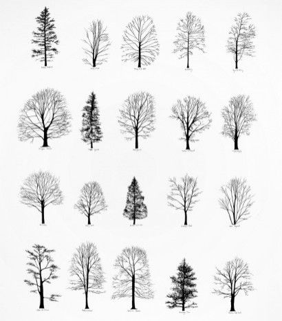 tree silhouettes dont know if printable or not but might be good for