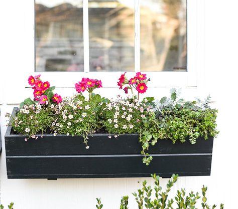 Balkonkasten Bepflanzen Ideen Und Beispiele Fur Sonnige Und